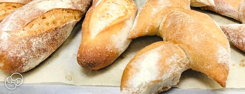 Popravak i održavanje pekarske opreme